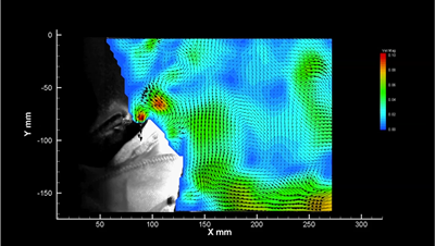 Vector map of flow velocity surrounding a face mask